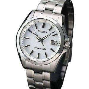 Citizen Eco-Drive AQ4030-51A Titanium Japan Made Men's Watch